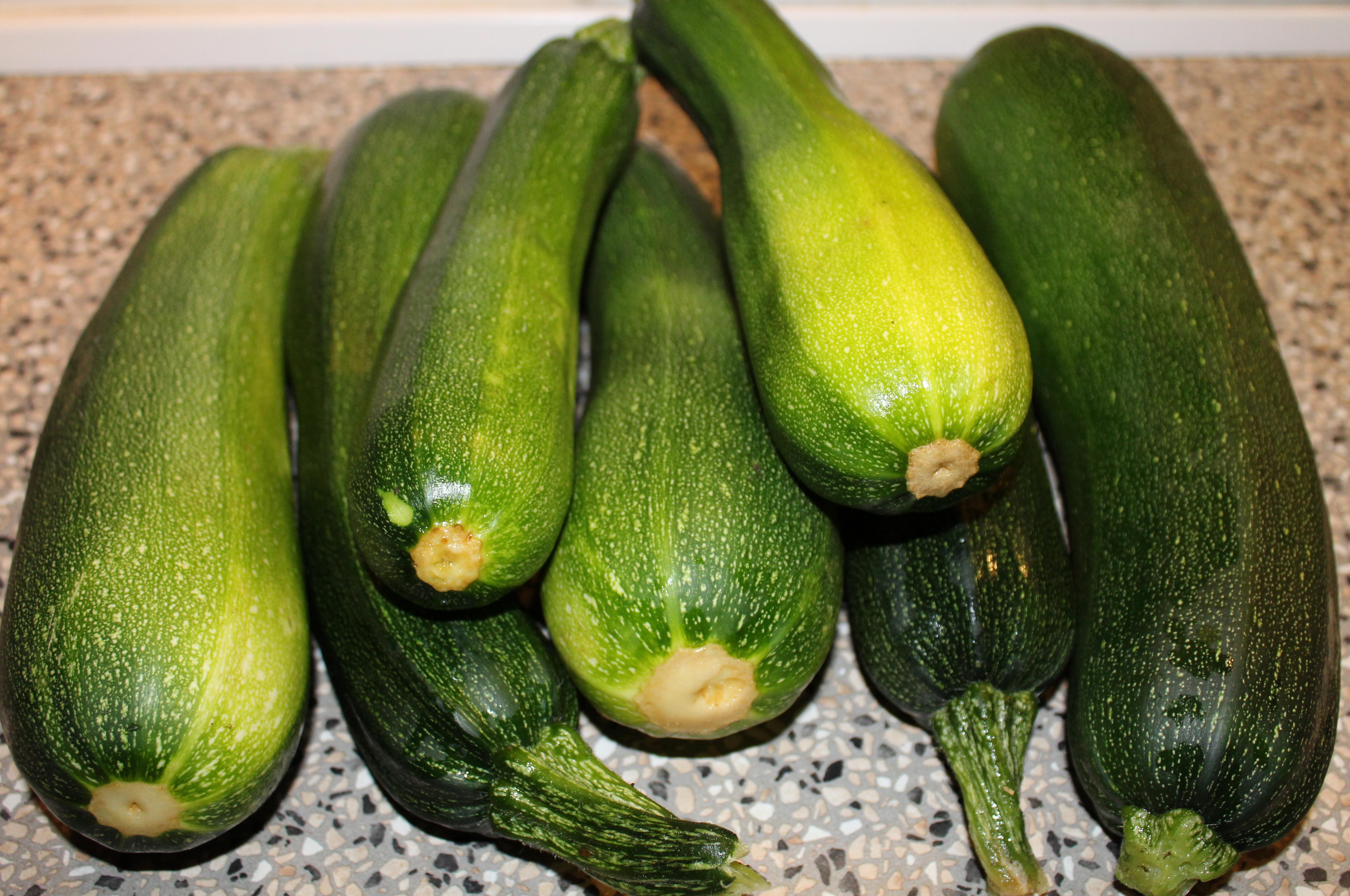 Friskhøstede squash