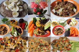 Vegansk mad til fire dage i sommerhus