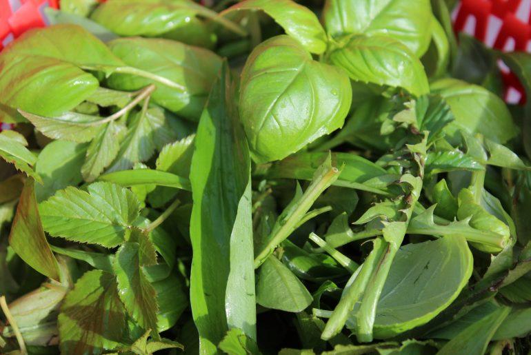 Pesto med ukrudt