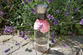 Vand med rosenblade og lavendel