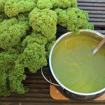 Grønkål-ærtesuppe