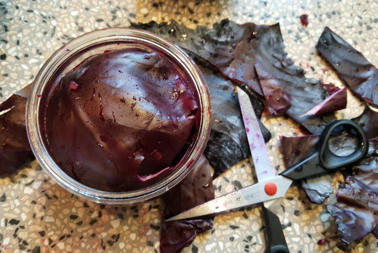 Fermenteret kål